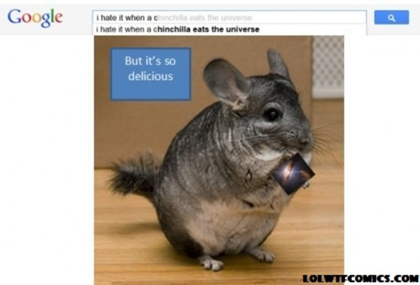 chinchilla research papers
