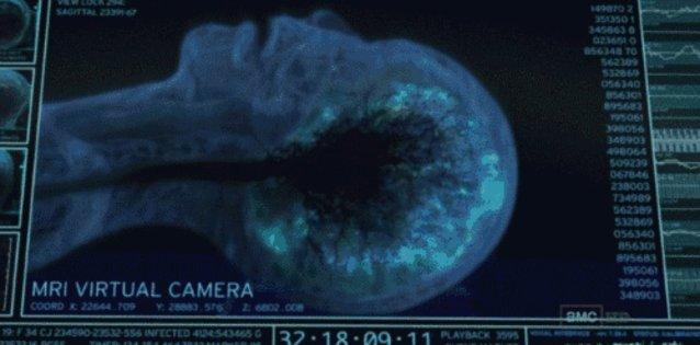 Risultati immagini per brain activity at moment of death