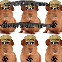 The Nazi Guinea Pig