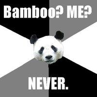 Sarcastic Panda
