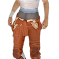 Is this Chell