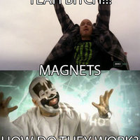 YEAH BITCH!!! MAGNETS, HOW DO THEY WORK?