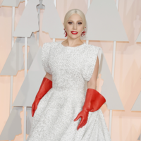 Lady Gaga's Dishwashing Gloves