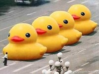 The Ducks of Tiananmen Square