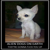 E.T. cloned in a dog