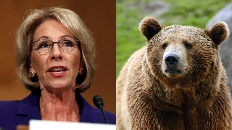 DeVos Says Schools Need Guns to Fight Bears
