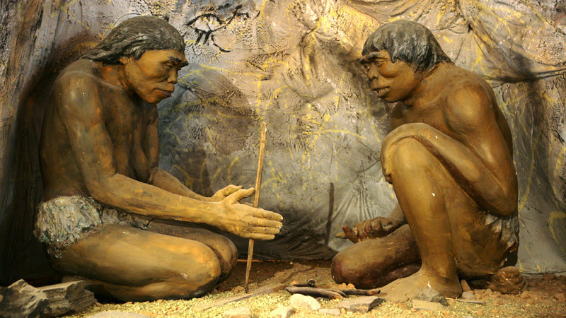 Rare Pic of Meme Discovering Fire