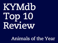 Animals of 2012