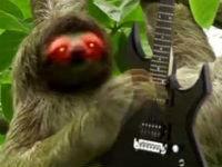 Heavy Metal Sloth