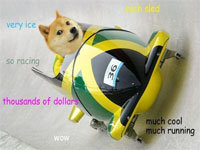 Dogecoin Funds Jamaican Bobsled Team