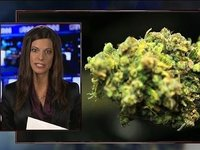 Marijuana Study Proves Your Worst Fears