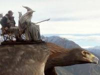 Airline Safety Middle Earth Style