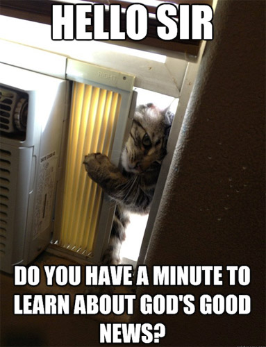 Jehova Cat Wants to Save Your Soul