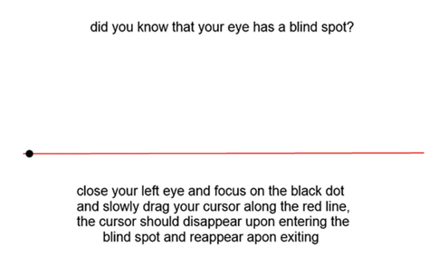 Are You in Touch with Your Blind Spot?