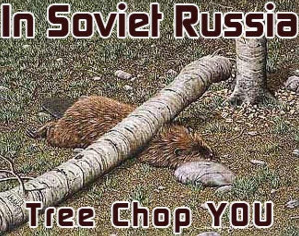 Jon stewart russia video chat