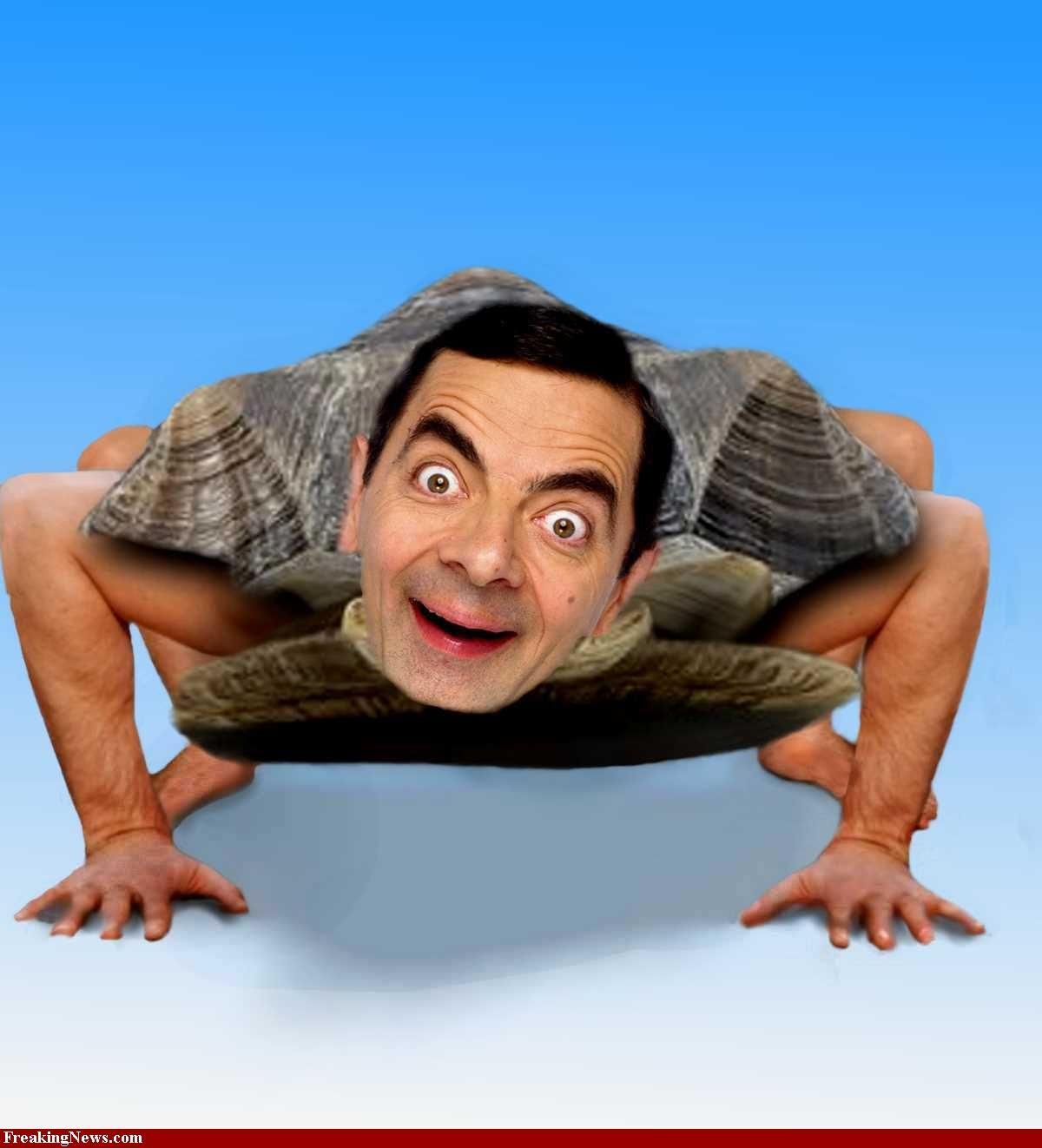 J'adore Mr. Bean Mr-Bean-Turtle-31706