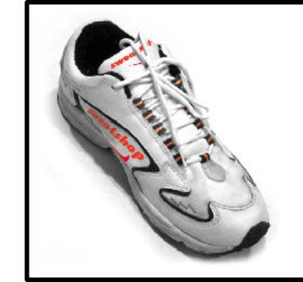 Nike - The Sweatshop Debate - Essay Example