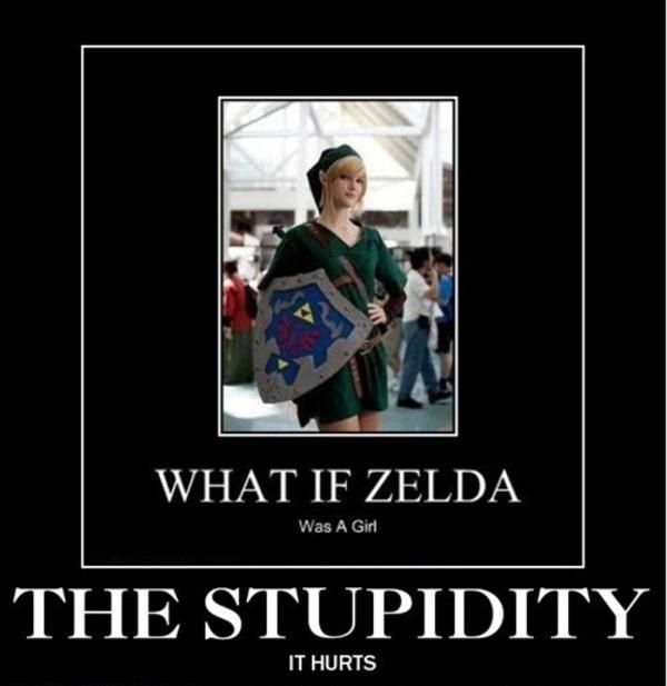 Hilarious Zelda Memes : Image link zelda confusion what if