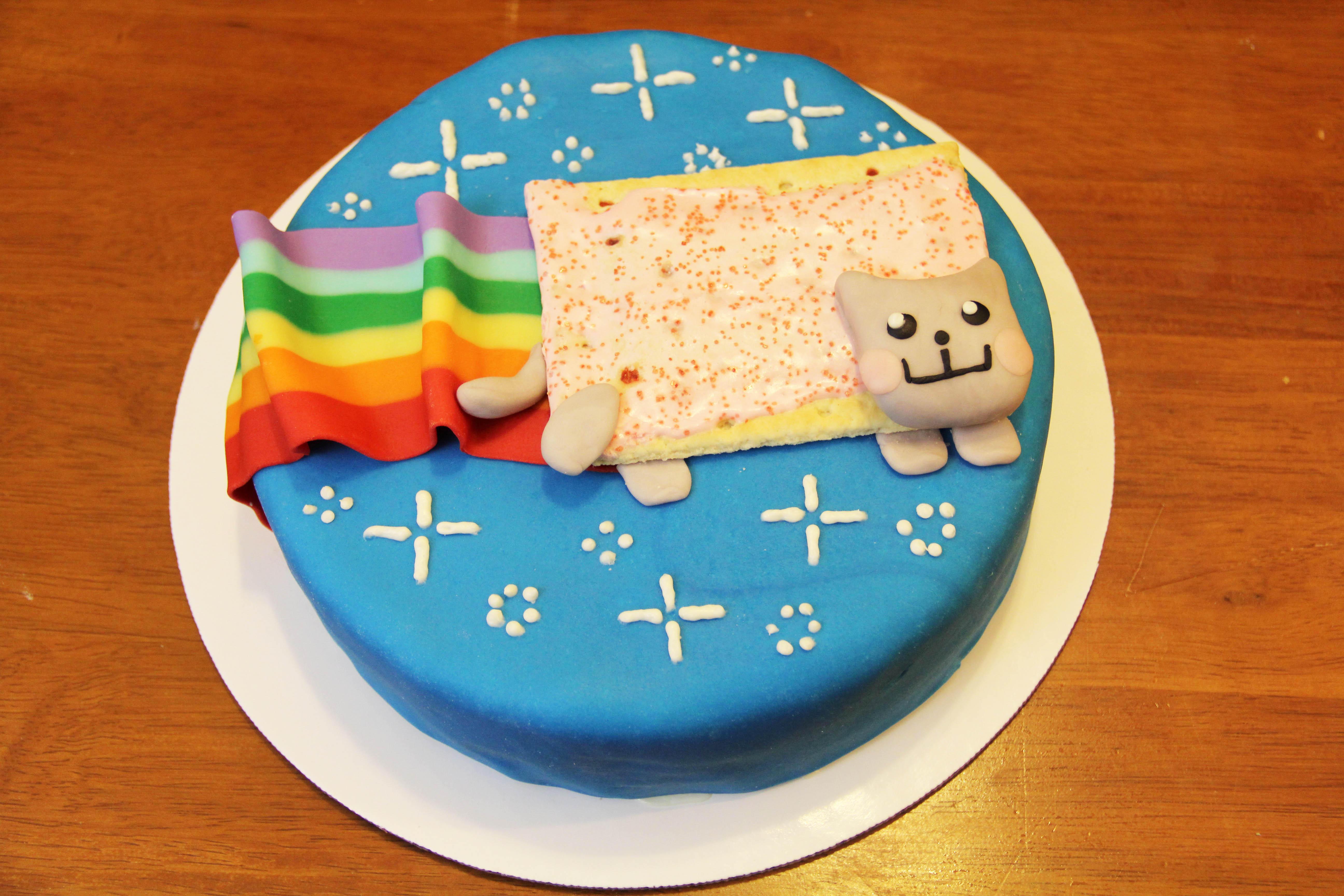 Nyan Cat Cake   Nyan Cat / Pop Tart Cat   Know Your Meme