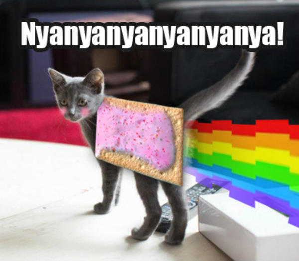 Deadmau5 S New Cat Nyan Cat Pop Tart Cat Know Your Meme
