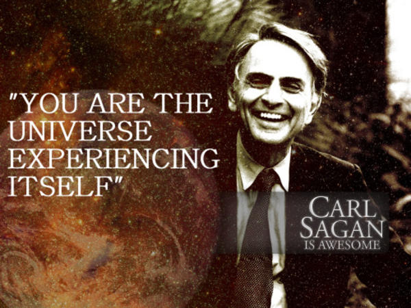 a literary analysis of can we know the universe by carl sagan
