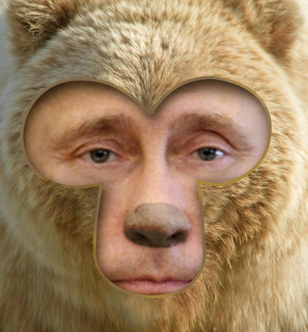 d6f jpgVladimir Putin Funny Bear