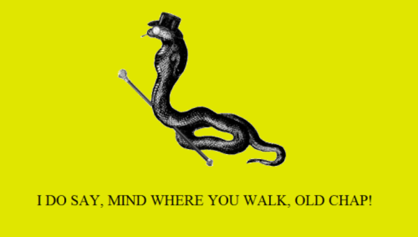 mind where you walk! | Gadsden Flag / Don't Tread On Me ...