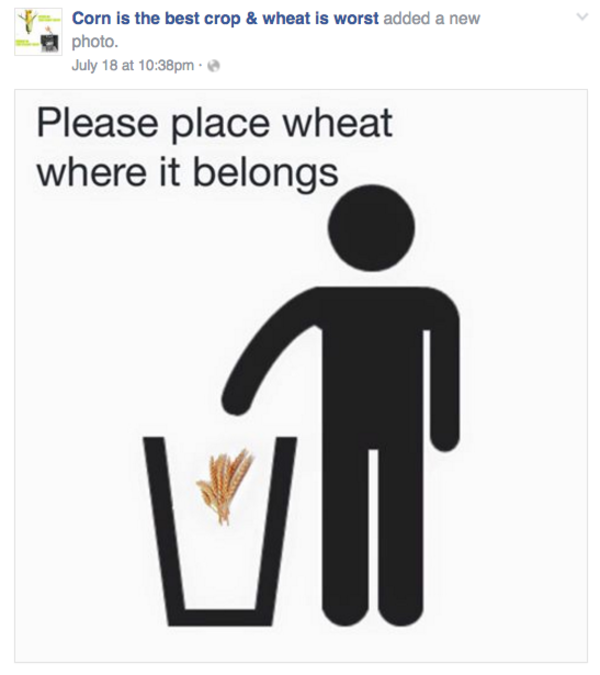 Place wheat in the trash corn is the best crop amp wheat is worst