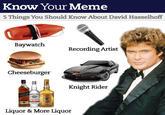 David Hasselhoff Drunk