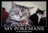 My Pokemans, Let Me Show You Them
