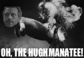 Oh the huge manatee