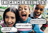 The Cancer That Is Killing /b/
