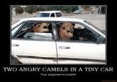 Two Camels in a Tiny Car