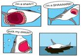 The Singing Shark