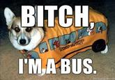 Bitch I'm a Bus
