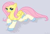 Ponies in Socks