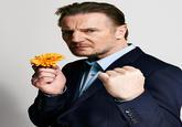Liam Neeson's Cock