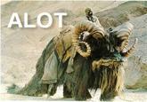 The Alot