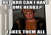 Bitch. Needs more herbs!