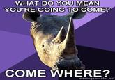 Sexually Oblivious Rhino