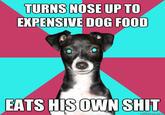 Dickhead Dog