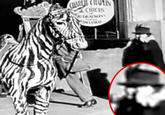 Charlie Chaplin's Time Traveler