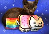 Nyan Cat / Pop Tart Cat