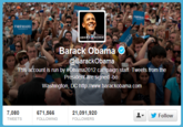 Novelty Twitter Accounts