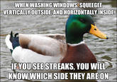 Actual Advice Mallard