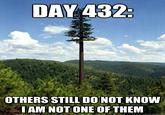 They Still Do Not Realize...