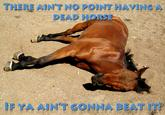 Beating A Dead Horse