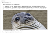 Wait... | Awkward Moment Seal | Know Your Meme