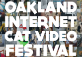 Internet Cat Video Film Festival