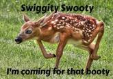 Swiggity Swag